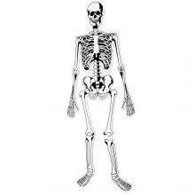 Gulvpuslespil - Skelet