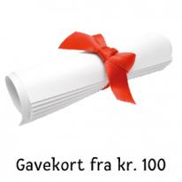 Gavekort fra kr. 100